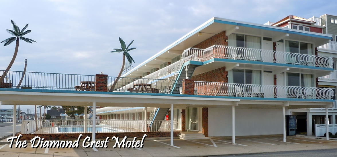 Dog Friendly Hotels In Wildwood Nj